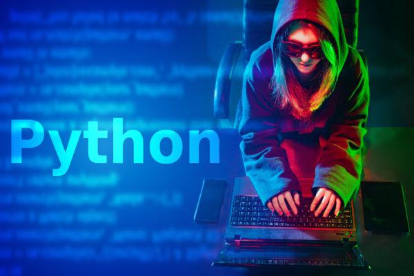 Python for Professional